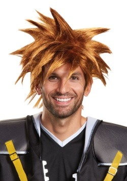 Kingdom Hearts Adult Sora Wig