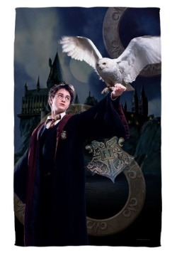 Harry Potter Harry and Hedwig Bath Towel