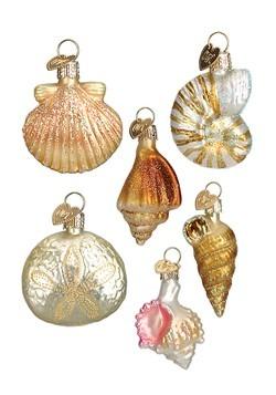 Sea Shell 6-Piece Ornament Set