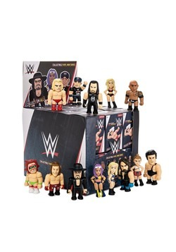 Kidrobot WWE Vinyl Mini Series Blindbox Figure