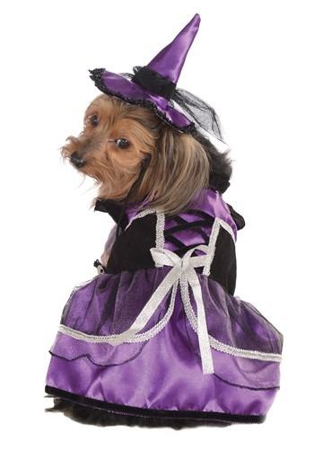 Purple Witch Pet Costume