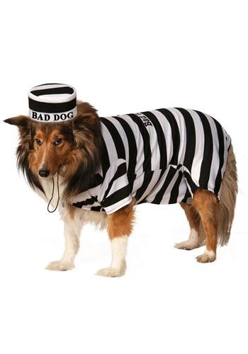 Pet Costume Prisoner