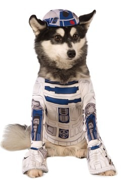 Star Wars R2-D2 Costume For Dog