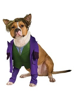Joker Pet Costume