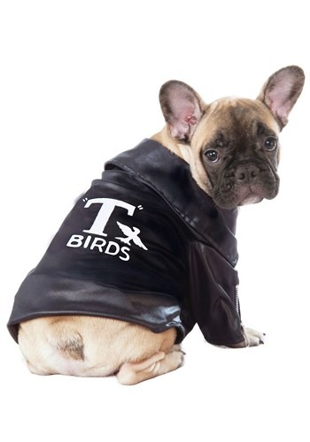 Grease T-Birds Jacket Pet Dog Costume Update 1