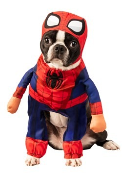 Spider Man Costume for Pets