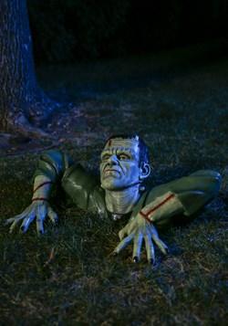 Frankenstein Ground Breaker Decoration