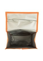 NASA Insulated Lunch Sack Alt 4