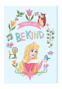 Disney Princess Sleeping Beauty Motivational Wall Art Canvas