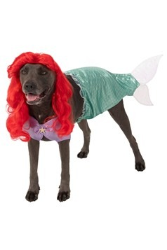 The Little Mermaid Ariel Plus Size Costume for Dogs