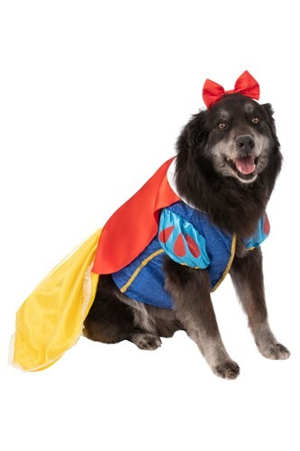 Snow White Plus Size Costume for Dogs