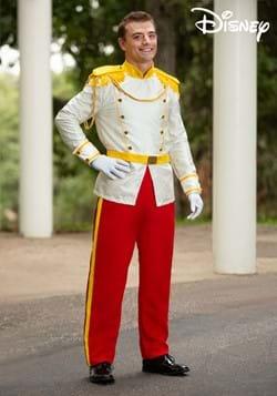 Adult Cinderella Prince Charming Costume
