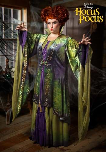 Plus Size Hocus Pocus Winifred Sanderson Costume-0
