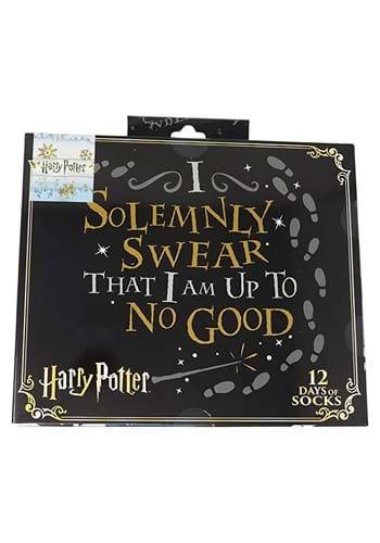 Harry Potter 12 Days Sock Gift Giving Box