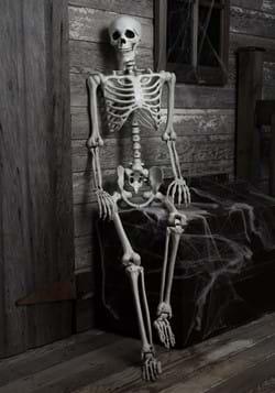 5ft Posable Skeleton