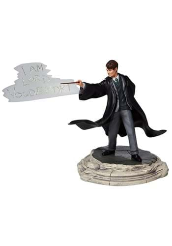 Harry Potter Tom Riddle Statue