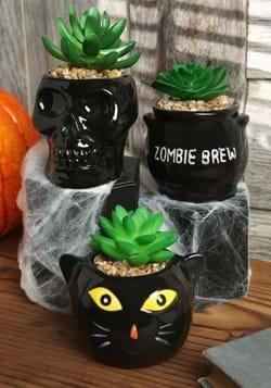 Halloween Succulent Planter Set Cauldron, Cat & Sk_Updated