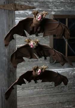 3 Pack Brown Bat1-2