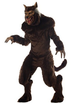 Deluxe Scary Werewolf Costume for Adults  sc 1 st  Fun.com & Werewolf Boys Costume