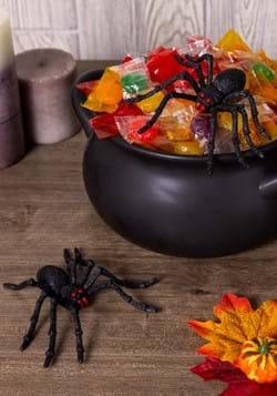 Pair of Spiders