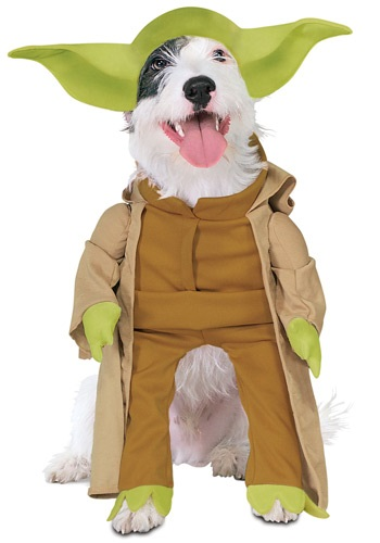 Dog Yoda Star Wars Costume