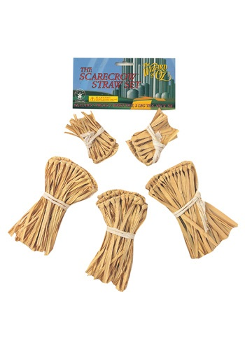 Wizard of Oz Five-Piece Straw Scarecrow Kit